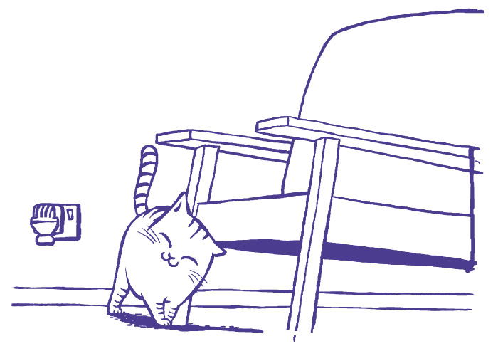 Katzensitter Urlaub