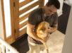 Tierarzt-Zuhause-Vorschau